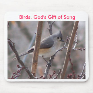 Tufted Titmouse Close-up,  Birds: God's Gift of... Mouse Pad