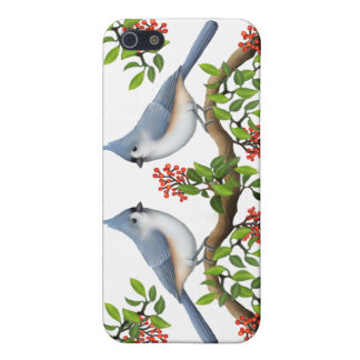 Tufted Titmouse Couple iPhone Case