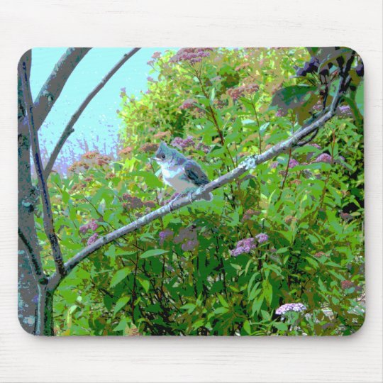 Tufted Titmouse Fledgling Baby Bird Mouse Pad