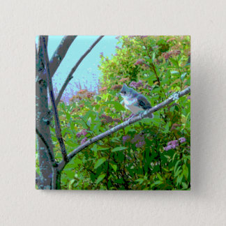 Tufted Titmouse Fledgling Baby Bird Pinback Button
