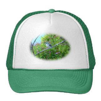 Tufted Titmouse Fledgling Baby Bird Trucker Hat