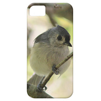 Tufted titmouse iPhone SE/5/5s case
