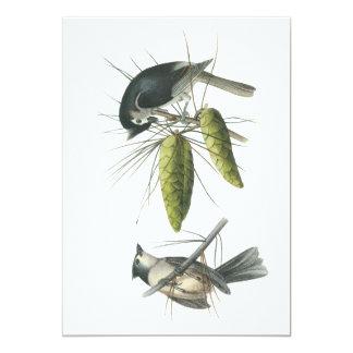 Tufted Titmouse, John Audubon Card