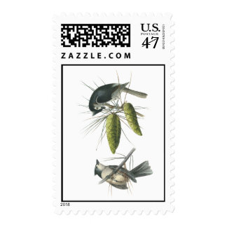 Tufted Titmouse, John Audubon Postage Stamp