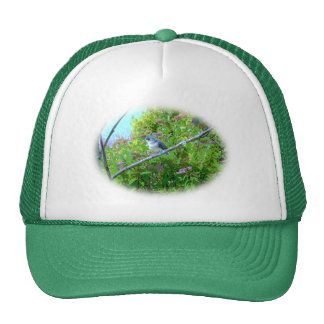 Tufted Titmouse: Newly Fledged Baby Bird Trucker Hat