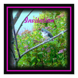 """Tufted Titmouse: Newly Fledged Baby Bird 5.25"""" Square Invitation Card"""