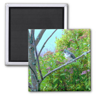 Tufted Titmouse: Newly Fledged Baby Bird Refrigerator Magnets