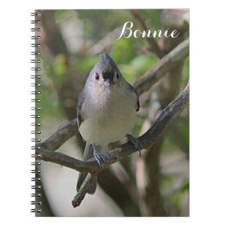 Tufted titmouse notebook