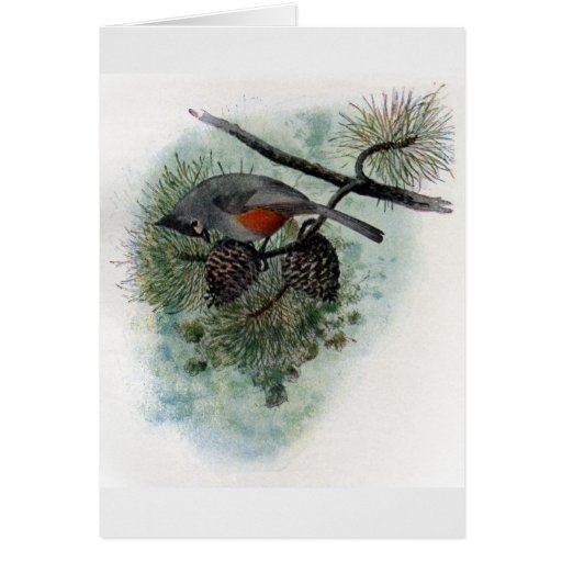 Tufted Titmouse Perched on Pinecone Card