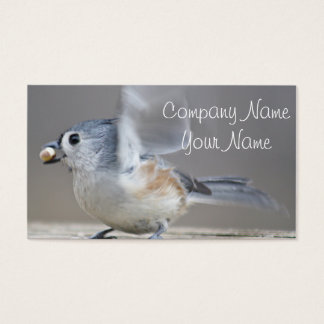 Tufted titmouse photo business card