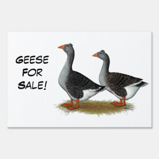 Tufted Toulouse Geese Sign
