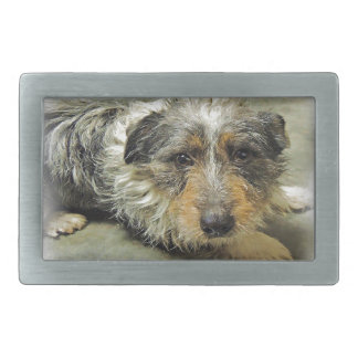 Tug at Heart Corgi Terrier Mix Dog Belt Buckle
