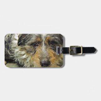 Tug at Heart Corgi Terrier Mix Dog Travel Bag Tags