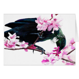 Tui Bird Feeding on Cherry Blossoms Card