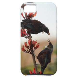Tui birds on New Zealand flax bush iPhone SE/5/5s Case