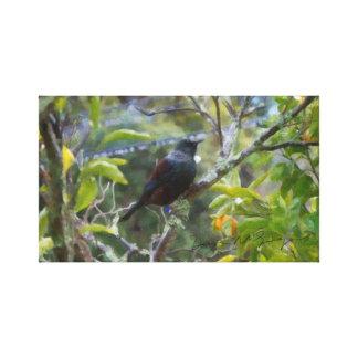 Tui in the Mandarin Tree Canvas Print