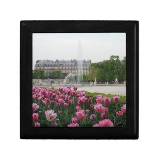 Tuileries Garden in bloom Jewelry Box
