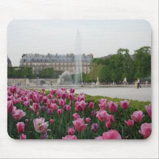 Tuileries Garden in bloom Mouse Pad