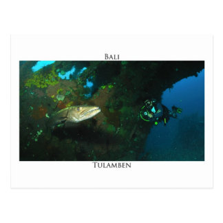 Tulamben's barracuda postcard