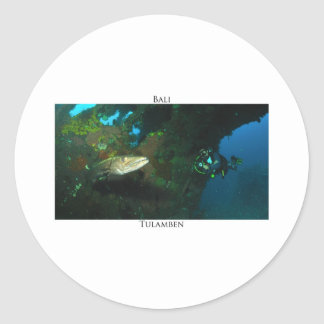 Tulamben's barracuda sticker