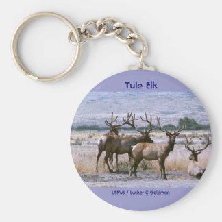Tule Elk Basic Round Button Keychain