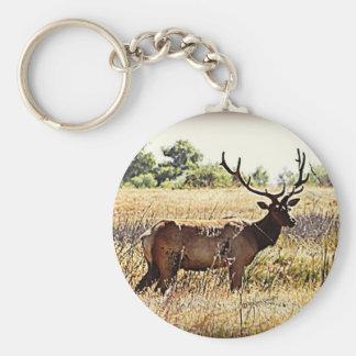 Tule Elk Bull Keychain
