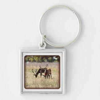 Tule Elk Keychain