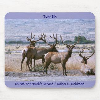 Tule Elk Mouse Mat