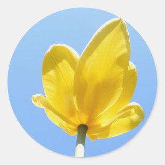 Tulip 53 ~ sticker