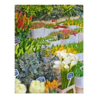 Tulip and Flower Market in Amsterdam Flyer