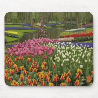 Tulip and hyacinth garden Keukenhof Gardens Mousepads