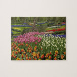 Tulip and hyacinth garden, Keukenhof Gardens, Puzzle