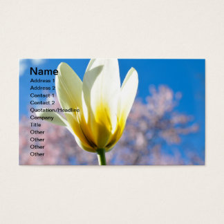 Tulip-and-sky1579 WHITE YELLOW TULIP FLOWER BLUE S Business Card