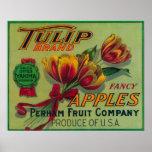 Tulip Apple Crate LabelYakima, WA Print