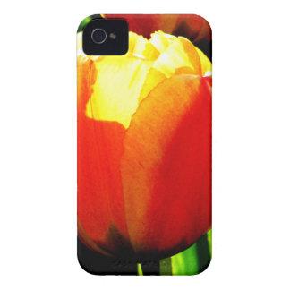 Tulip Art iPhone 4 Cover
