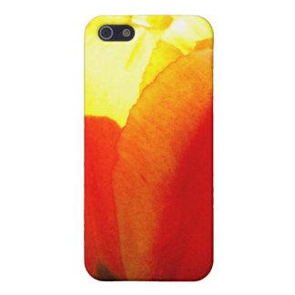 Tulip Art iPhone 5 Case