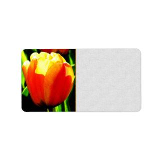 Tulip Art Labels