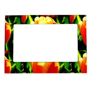 Tulip Art Magnetic Picture Frame