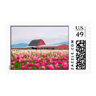 Tulip Barn Stamp