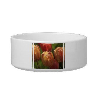 Tulip Blossoms Pet Bowl