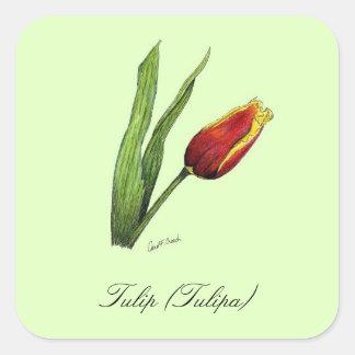 Tulip Botanical Seal Stickers