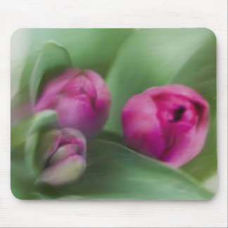 Tulip Bouquet Mouse Pad