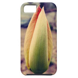 Tulip bud iPhone 5 cover