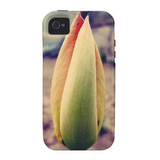 Tulip bud iPhone 4/4S cover