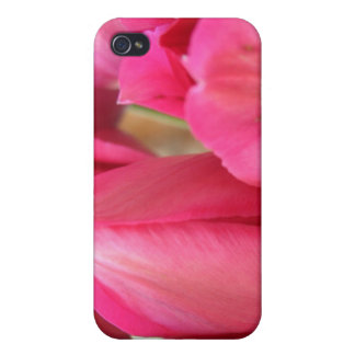 Tulip Bulbs iPhone 4 Case
