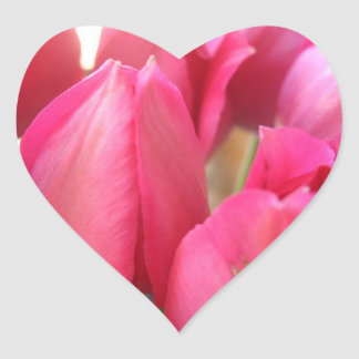 Tulip Bulbs Stickers