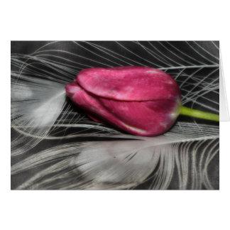 tulip cards