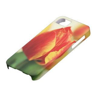 Tulip iPhone 5 Covers