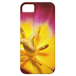 Tulip Closeup iPhone SE/5/5s Case