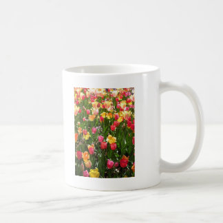 tulip,coloful coffee mug